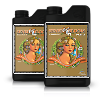 PH Perfect Sensi Coco Bloom Part A & B 1 L